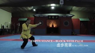 Download Shaolin Kungfu Basic Movements Video