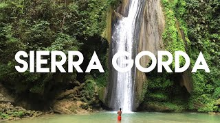 Download La biosfera de Sierra Gorda: El tesoro de Querétaro Video