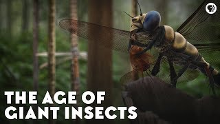 Download The Age of Giant Insects Video
