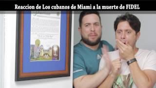 Download Como reaccionaron Los cubanos de Miami a la muerte de Fidel !!! Los Pichy Boys Video