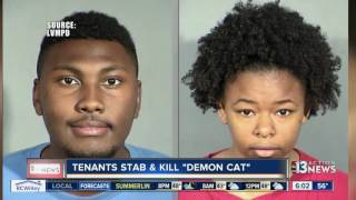 Download Las Vegas couple confesses to torturing, killing cat believed to be a demon Video