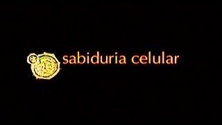 Download SABIDURIA CELULAR - CURA DEL VIH Video