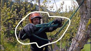 Download Cottonwood Speed-Line Video