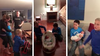 Download Adopted Baby Brother Surprise Video