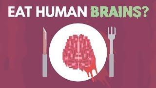 Download What Happens If You Eat Human Brains? Video