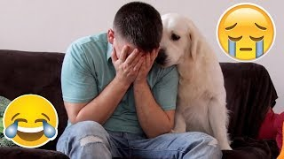 Download Funny Dog Reaction to me Crying - PRANK (BEST REACTION EVER) Video