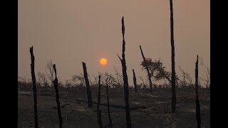 Download News Wrap: Firefighters make progress on Northern California wildfires Video