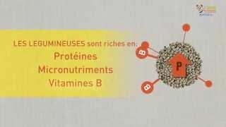 Download Les légumineuses, des cultures importantes pour la sécurité alimentaire Video