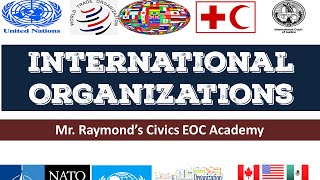 Download International Organizations Governmental and NGOs Video
