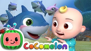 Download Baby Shark | CoCoMelon Nursery Rhymes & Kids Songs Video