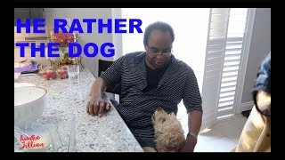 Download HE RATHER THE DOG Video