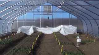 Download Single Poly vs Double Poly By Rimol Greenhouse Systems Video