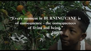Download ARRAY's BURNING CANE Official Trailer | Directed by Phillip Youmans Video