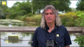 Download How to Adjust Your Binoculars (Presented by Nikon Canada) Video