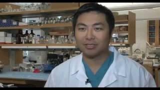 Download Brain Cancer Research - Glioblastoma and Glioma | UCLA Neurosurgery Video