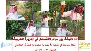 Download 45 دقيقة بين نوادر الأشجار في الجزيرة العربية [جولة سريعة في مزرعة د أحمد بن سعيد بن قشاش] 16-4-1438 Video