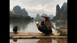 Download Li River Cormorant Fishing Video