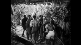 Download Blonde Savage (1947) JUNGLE ADVENTURE Video