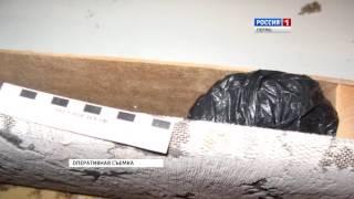 Download В Перми осудили банду наркоторговцев Video