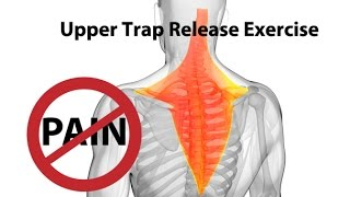 Download Upper Trap Release Exercise for Instant Neck Pain Relief - Dr Mandell Video