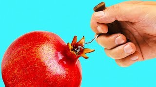 Download 24 LIFE HACKS FOR FRUITS Video