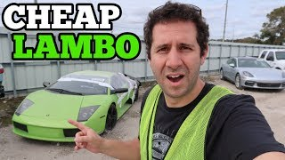 Download I Found a RARE Lamborghini at the Salvage Auto Auction! Should I Buy It? Video