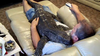 Download Watching T.V. with my Giant Black Throat Monitor=bigboy3293 Video