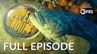 Download Super Grouper - Full Episode Video