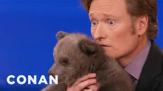 Download Animal Expert David Mizejewski: Brown Bear Cub & Baby Alligator - CONAN on TBS Video