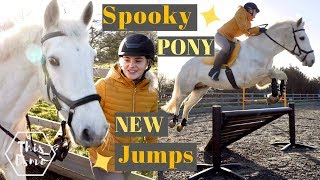 Download New Show Jumps and a Spooky Pony! | AD | This Esme Video