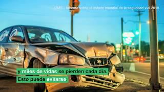 Download Seguridad vial: 1 persona muere cada 24 segundos Video