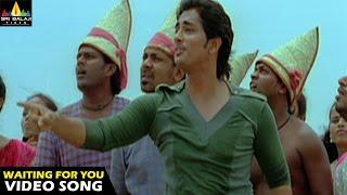Download Oye Songs | I am waiting Video Song | Telugu Latest Video Songs | Siddharth | Sri Balaji Video Video