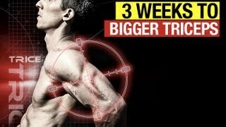 Download Bigger Triceps In Three Weeks - The Twisted Triceps Workout Video