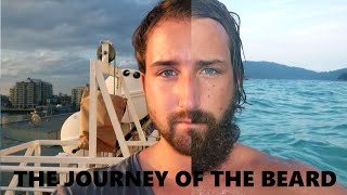 Download The Journey Of The Beard - Beard Time Lapse Video
