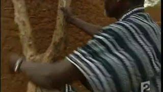 Download La famine au Niger Video