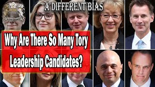 Download Why Are There So Many Tory Leadership Candidates? Video