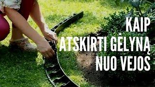 Download Kaip atskirti gėlyną nuo vejos / Apželdinimo kursai Geltonas Karutis Video