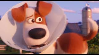 Download The Secret Life Of Pets 2 - El Tráiler de Rooster Video