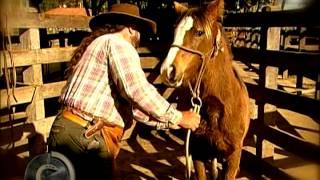 Download Zé Paraguai o homem que fez a diferença no laço, hoje faz na doma. (Parte I) Video