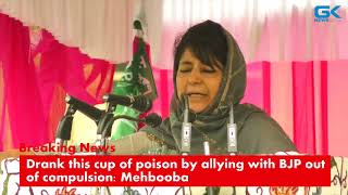 Download Drank this cup of poison by allying with BJP out of compulsion: Mehbooba Video