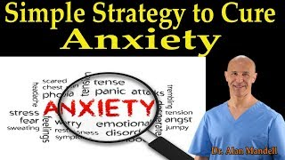Download Simple Strategy to Cure Anxiety - Dr. Alan Mandell, DC Video