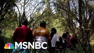 Download Must Watch: Chris Hayes On 'Despicable' New Donald President Trump Policy | All In | MSNBC Video