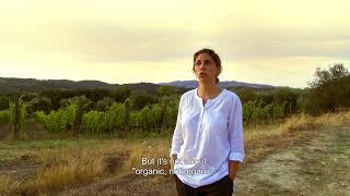 Download Natural Resistance (JD) Video