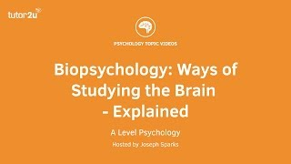 Download Biopsychology: Ways of Studying the Brain Explained Video