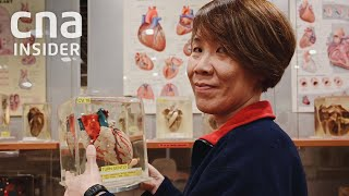 Download How Human Body Donors Teach Future Doctors Video