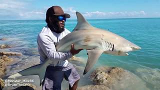 Download What Type of SHARK Did We Catch? Monster Mike Fishing Video