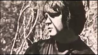 Download Beautiful Dreamer - Brian Wilson and the Story of 'SMiLE' Video