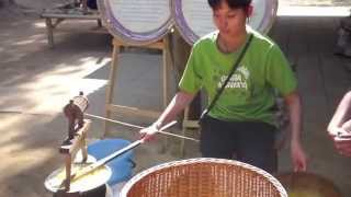 Download Making Thai Silk: From Silkworm to Fabric Video