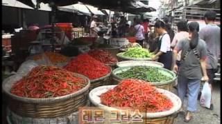 Download [다큐클래식] 아시아 음식문화 기행 11회-혀끝으로 느끼는 물과 절의 나라: 태국 / A Food Taste of Asia #11-Thai Food Video