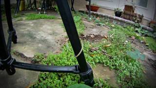 Download GoPro HD Hero Time-Lapse: Attack of the Morning Glory Plant Video